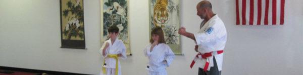Kids Class at All Okinawa Karate