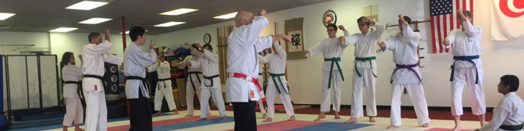 Adult Karate Class - All Okinawa Karate & Kobudo