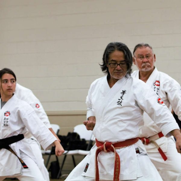Kaicho Demonstrating Kata